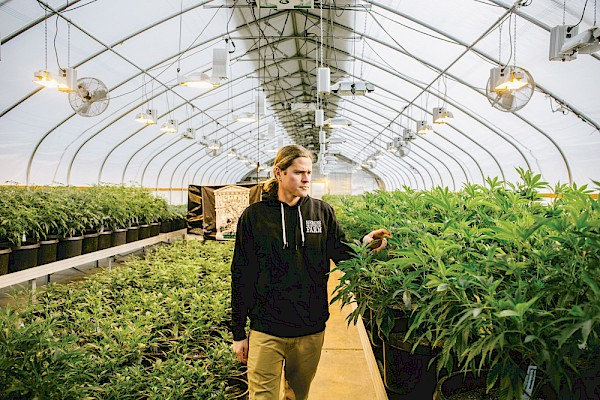 Patrick Pooler of Heroes of the Farm surveys his grow operation, which has financially supported numerous musicians over the years—photo by Jake Gravbrot