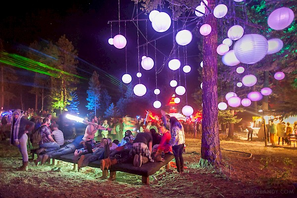 A scene from What The Festival's Illuminated Forest in 2015—click to see more photos by Drew Bandy