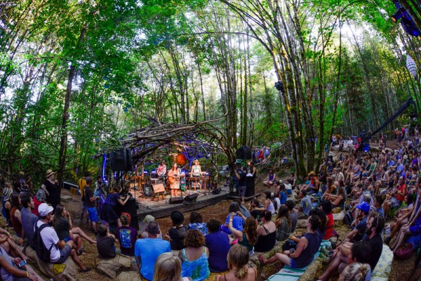 The Woods Stage: Photo by Anthony Pidgeon